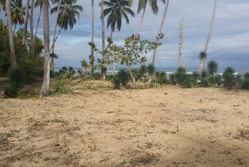 Terreno en primera línea de playa